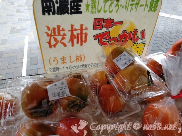 道の駅 月見の里南濃 日本一大きい渋柿