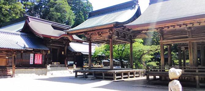 猿投神社・5月晴天で木漏れ日が気持ちいい