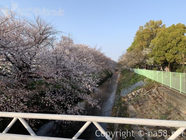 「御用水跡街園」(名古屋市北区)桜並木、いくつかの橋を経て
