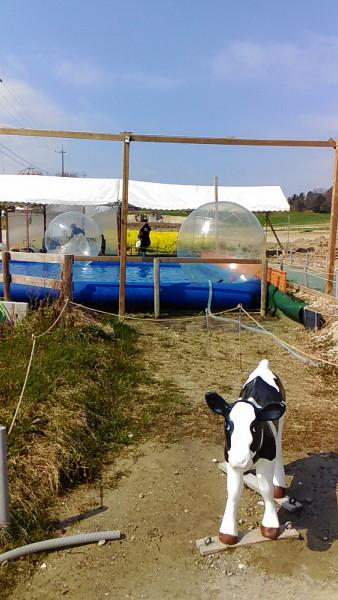 プールに浮かす透明ボールの遊具