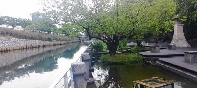 御用水跡公園、黒川樋門を散歩してきました。