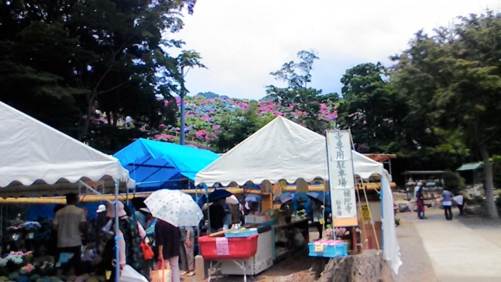 形原温泉あじさいの里2019年6月中・お土産と昼食と臨時バス(愛知県蒲郡市)