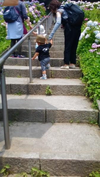 形原温泉あじさいの里階段