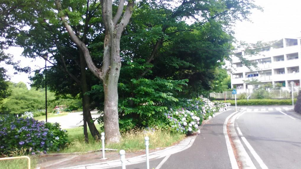 茶屋ヶ坂公園駐車場付近
