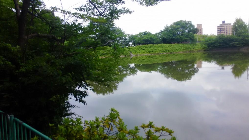 茶屋ヶ坂池
