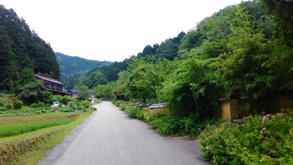 松平郷園地高月院に向かう道