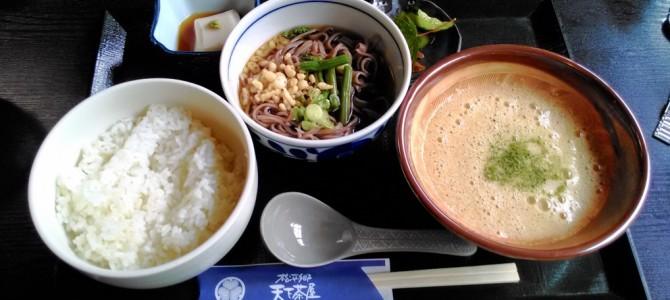 松平郷園地・家康気分で麦飯とろろと天下餅・おみやげ(愛知県豊田市)