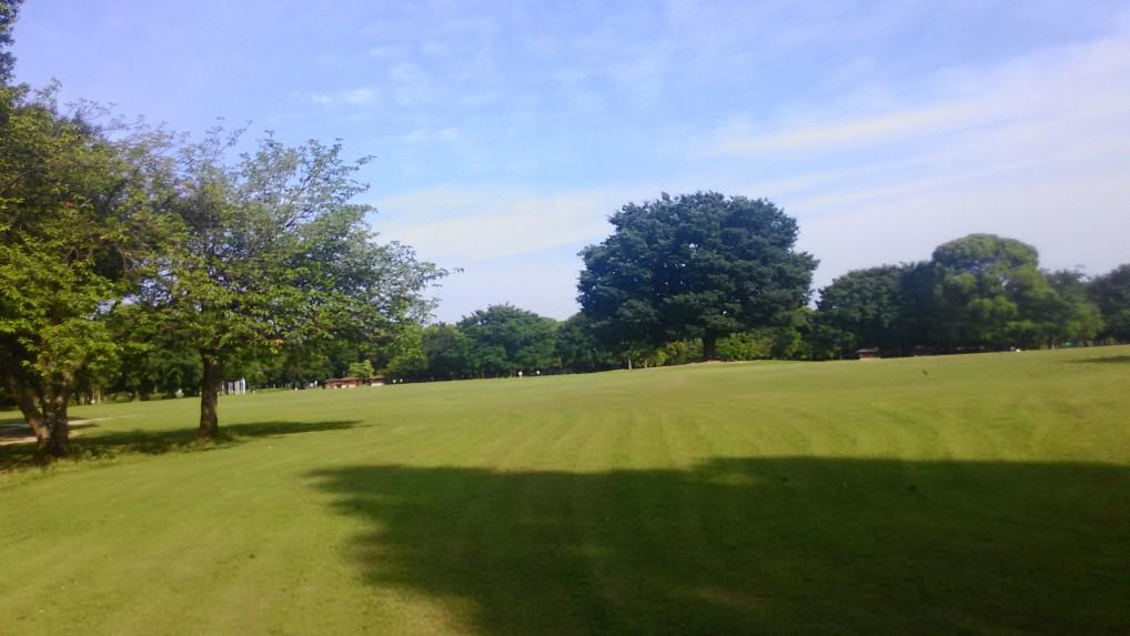 園内は広く、芝生の広場や森があったり、幼児の遊べる公園があったり、日曜日には家族連れがたくさんやってきて賑やかです。