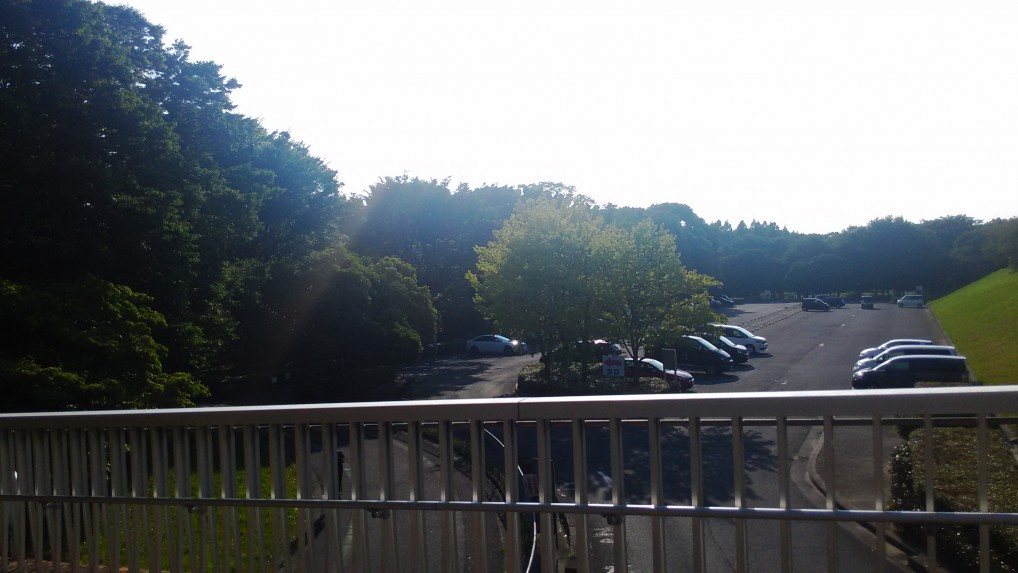 森の中の駐車場です。