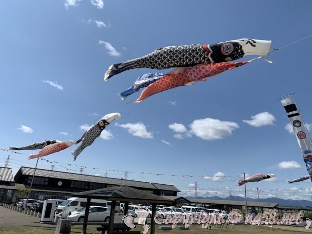 道の駅立田ふれあいの里(愛知県愛西市)の外観と駐車場、こいのぼりが泳ぐ