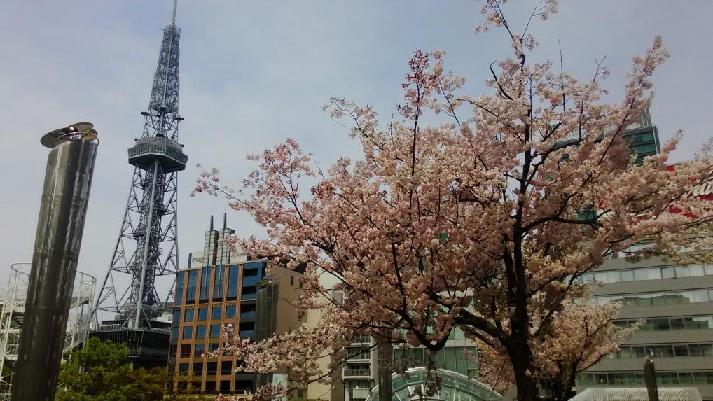 オアシス21の公園からテレビ塔をのぞむ