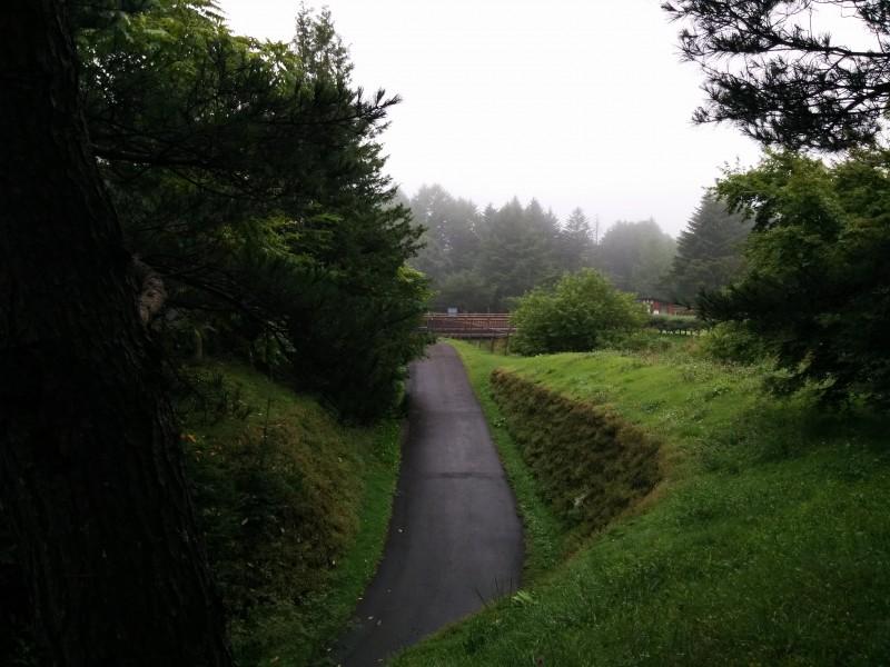 軽井沢プリンス通りから西の風景
