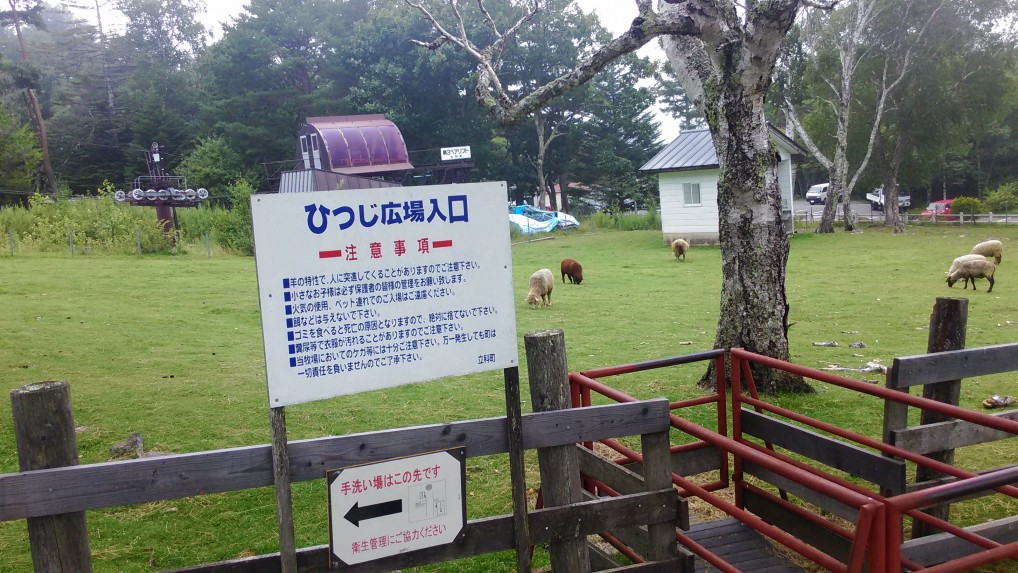 蓼科牧場のふれあい牧場羊広場の入り口案内