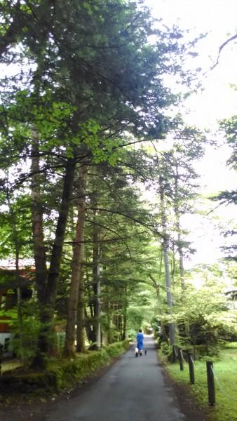 旧軽井沢別荘地の風景
