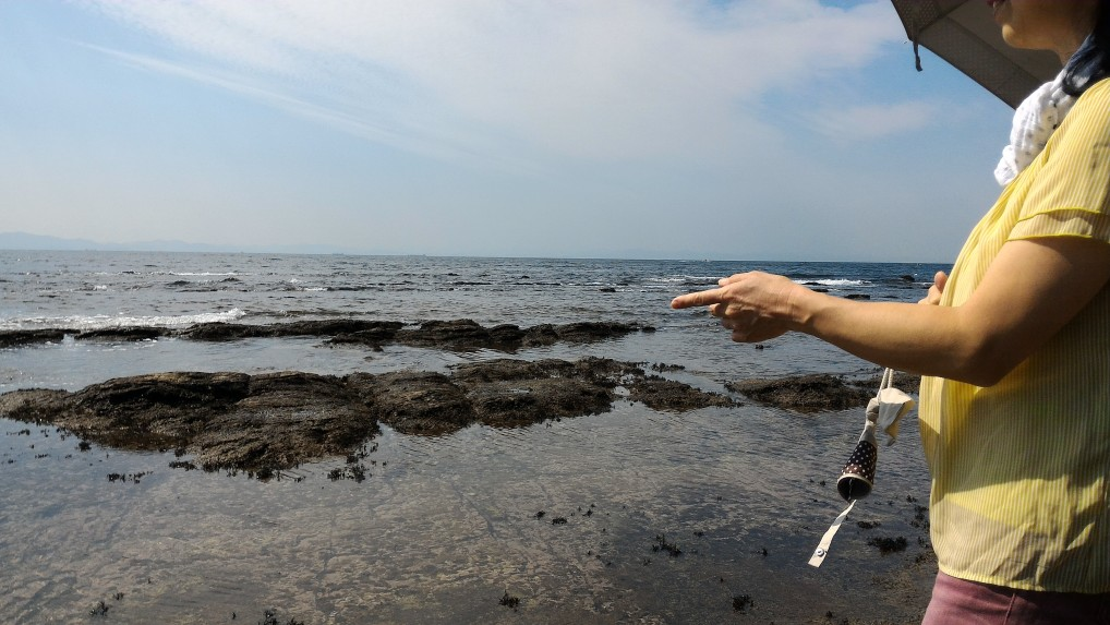 師崎港羽豆岬から伊勢湾を望む海岸沿い