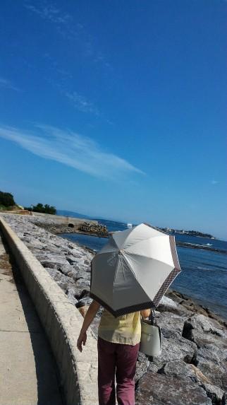 師崎港羽豆岬から伊勢湾を望む