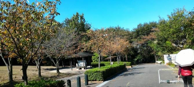 大府市(愛知県)二ツ池公園の駐車場・整備された歩道で自然観察と散策