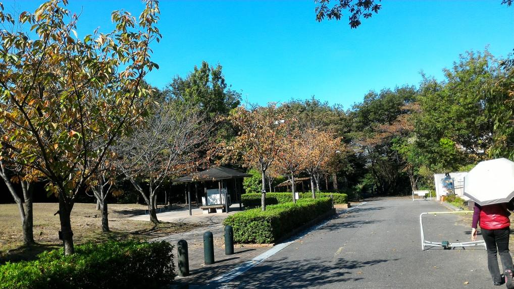 愛知県大府市二ツ池公園入り口から入る景色