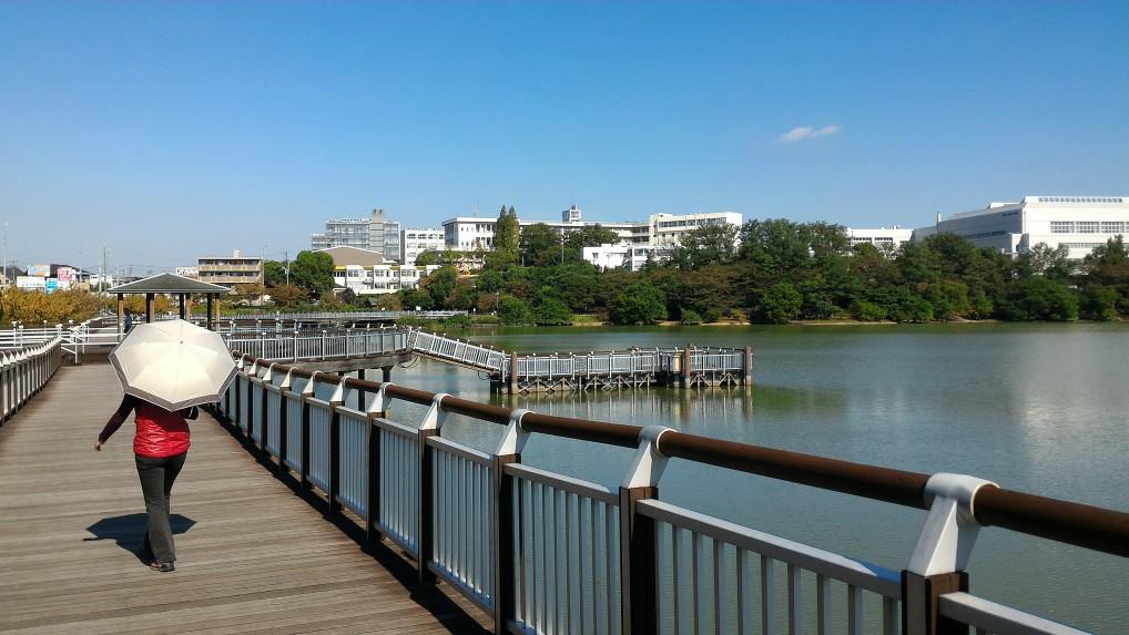 愛知県大府市二ツ池公園デッキ風の散策路