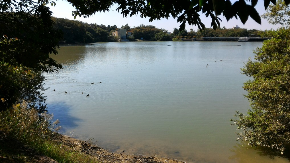 愛知県大府市二ツ池公園