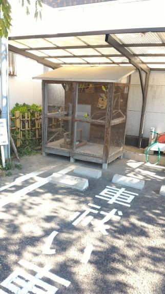 「尾張猿田彦神社」愛知県一宮市の車祓いと鳥かご
