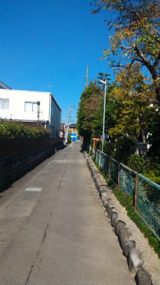 駐車場からの細い道右が尾張猿田彦神社
