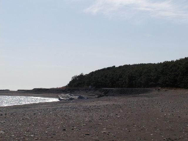 三保の松原(静岡県清水区)なだらかな海岸沿いに松林