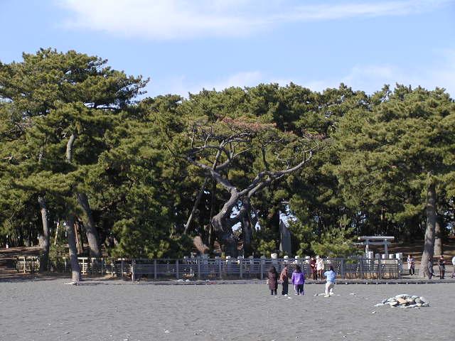 三保の松原(静岡県清水区)の美しい景勝