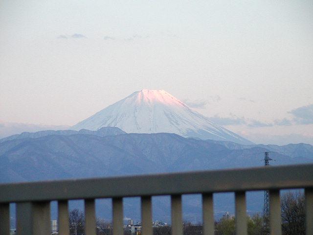 舞鶴城公園(甲府城跡)から見た富士山