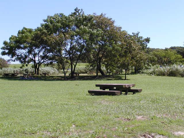 祖父江砂丘(木曽三川公園)の広場とイステーブル