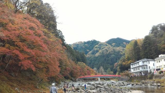 香嵐渓(愛知県豊田市)のもみじのトンネルの下の川岸から
