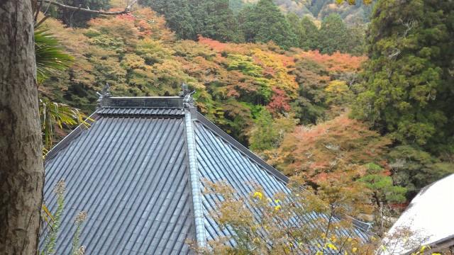 香嵐渓の香積寺(こうじゃくじ)と飯盛山山頂付近の紅葉