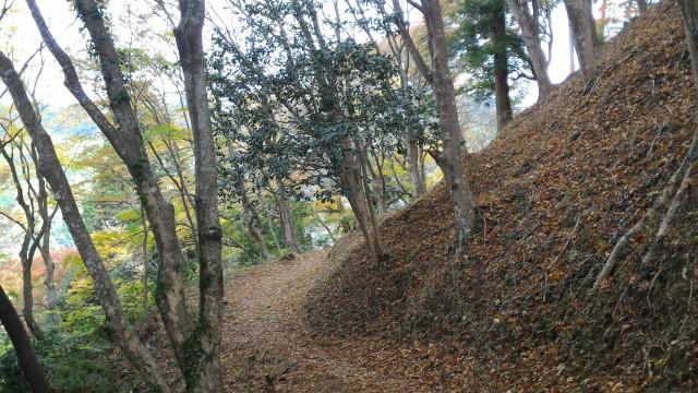 香嵐渓の飯盛山山頂付近の山道