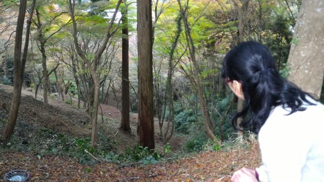 香嵐渓の飯盛山山頂付近は絶壁に近い斜面