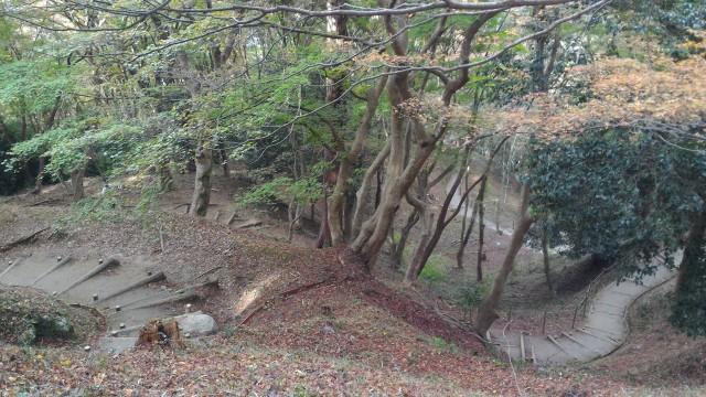 香嵐渓の飯盛山の山道