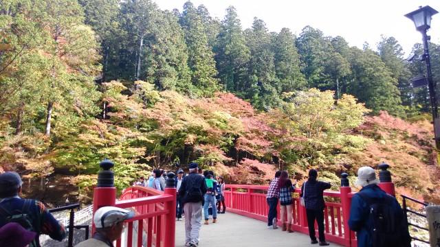 香嵐渓(愛知県豊田市)の紅葉真っ盛り11月16日待月橋から