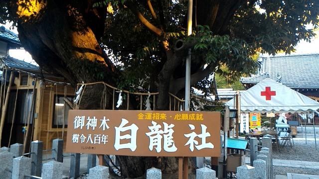 伊奴神社(名古屋市西区)の白龍社