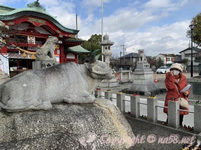 上野天満宮(名古屋市千種区)なで牛はもう一体