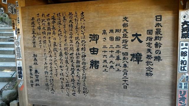 静岡県熱海市来宮神社の大楠の由緒