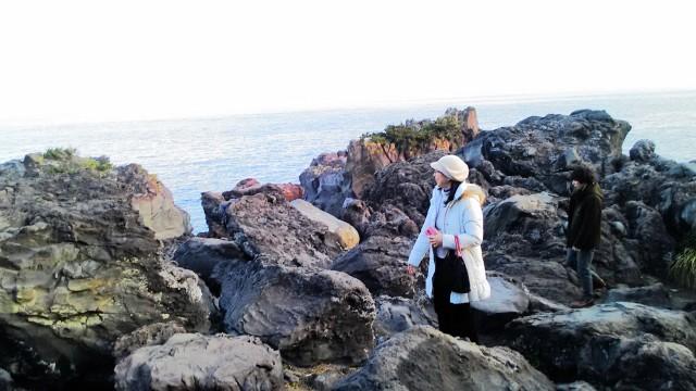 伊東市城ヶ崎海岸の岸壁付近