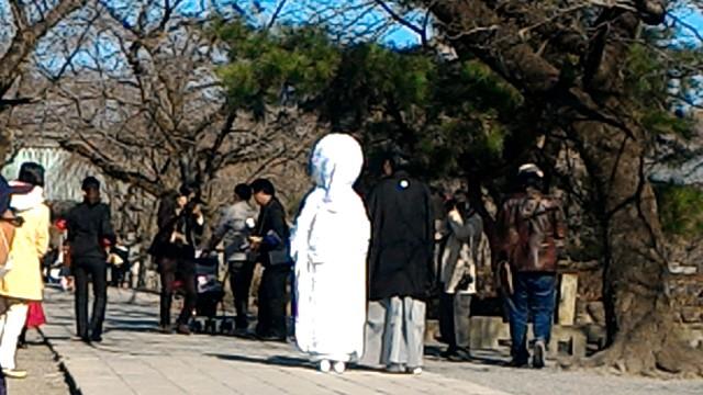 三嶋大社(静岡県三島市)で神前結婚式をあげる新郎新婦