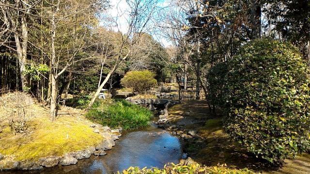 三島市源兵衛川の水辺の散歩道「水の苑緑地」