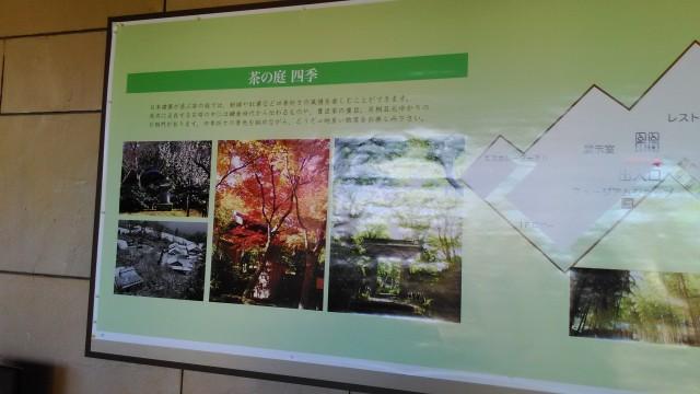MOA美術館茶の庭の四季