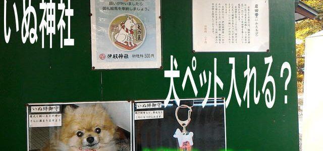 伊奴(いぬ)神社・犬ペットは入れる?犬絆御守あります!(名古屋市西区)