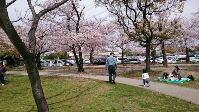 愛知県春日井市落合公園の大駐車場