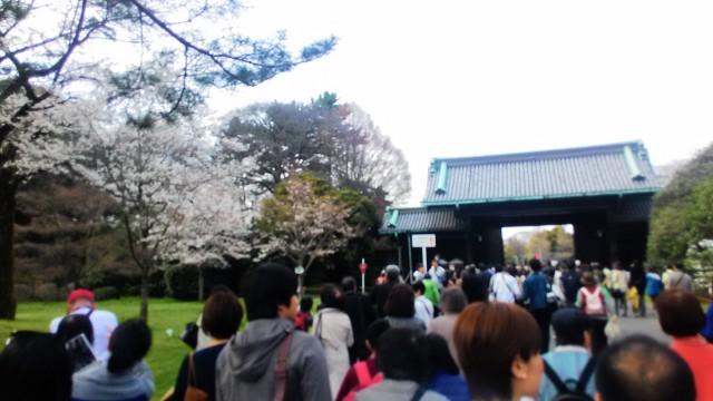 皇居花見一般公開通りぬけの出口の乾門(いぬいもん)