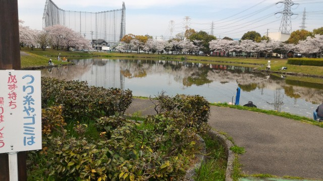 愛知県春日井市落合公園釣りのできる池