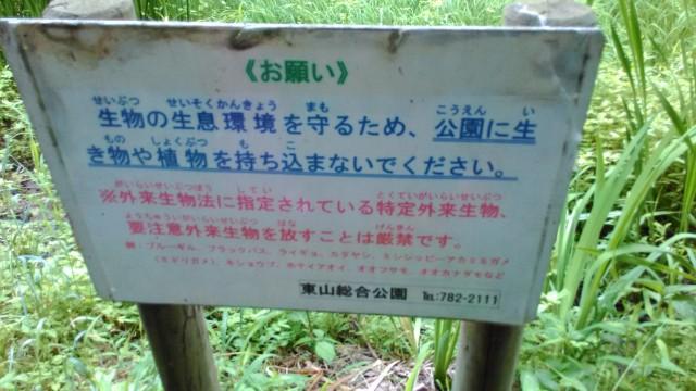 名古屋市千種区平和公園「里山の家」からのくらしの森散策蕗お願いの掲示板