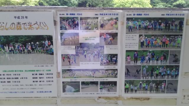 名古屋市千種区平和公園「里山の家」からのくらしの森散策蕗活動内容