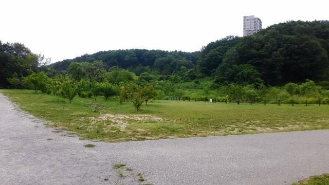名古屋市千種区平和公園「里山の家」からのくらしの森散策蕗はじまりのところ